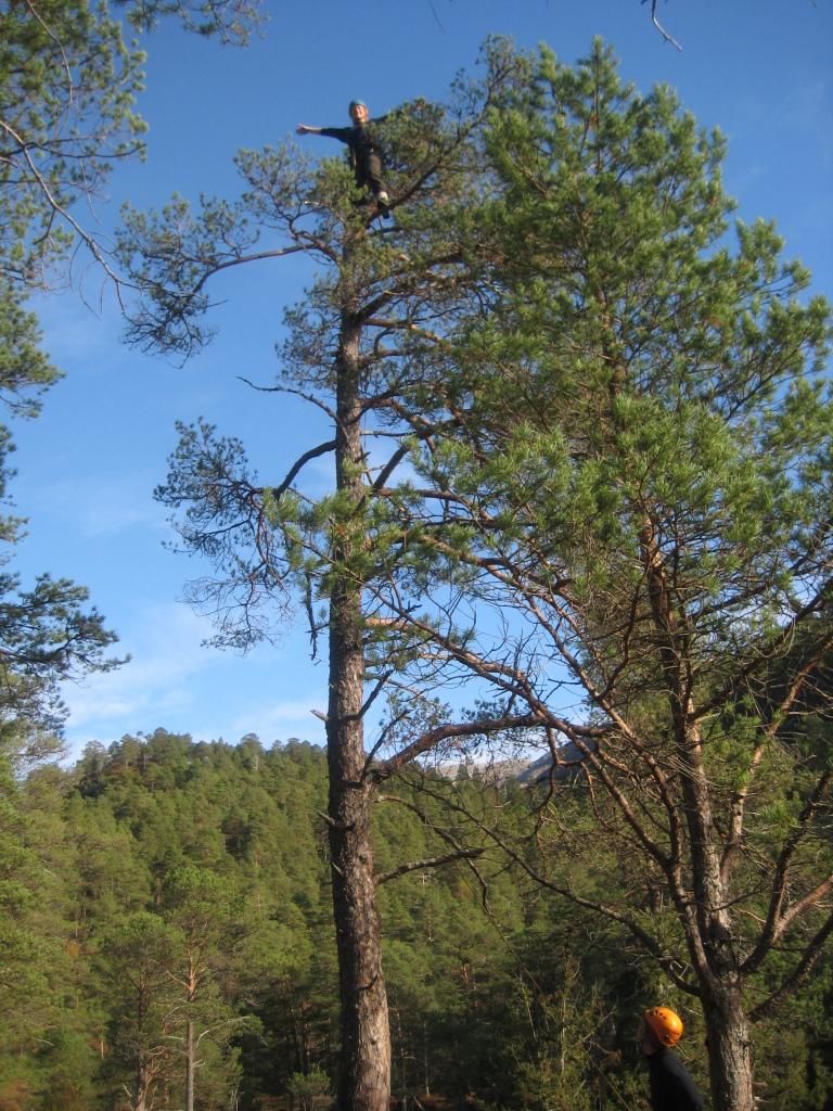 treklatring_friluftsliv, Høgskulen i Volda_foto av stig løland